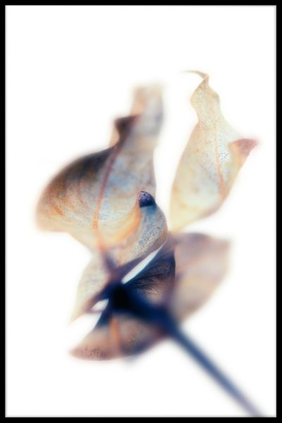 Abstract Blue Brown Toned Leaf Juliste