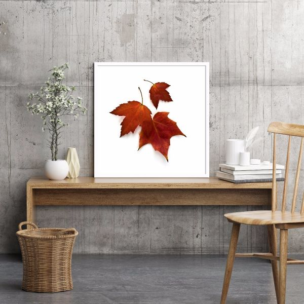 Autumn Maple Leaves Printti
