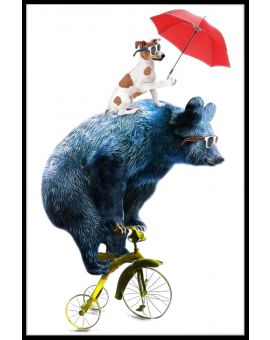 Bear Bicycle Illustration Juliste