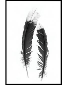 Feather Black and White Juliste