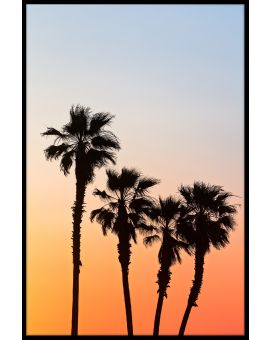 Palm Sunset Juliste