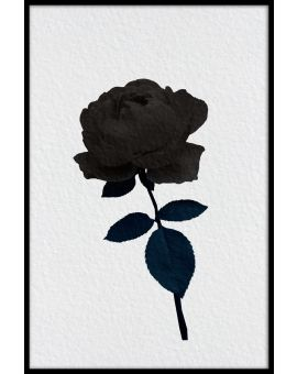 Dark Rose Illustration Juliste