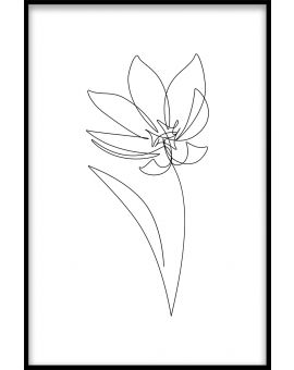 Line Art Flower Juliste