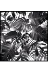 Palm Leaves Black and White Juliste