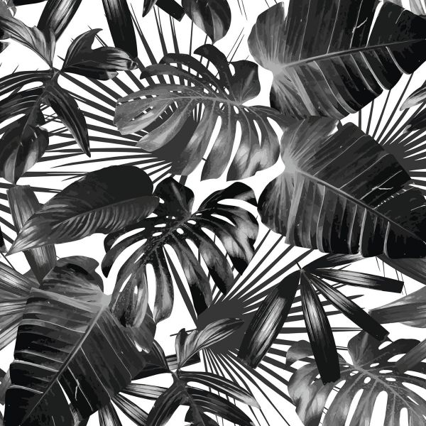 Palm Leaves Black and White Posteri
