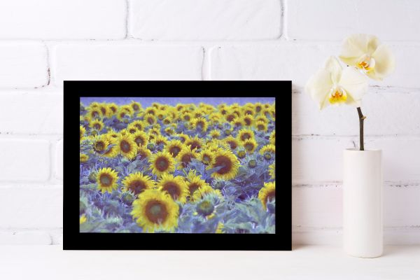 Sunflower Oil Painting Printti