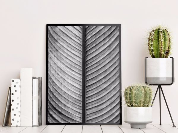 Black & White Palm Leaf Printti