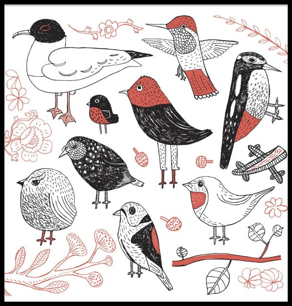 Hand Drawn Birds Juliste