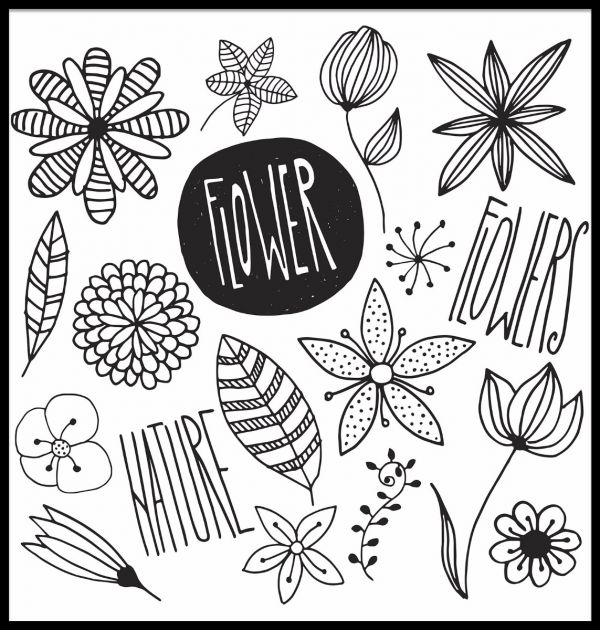 Flowers Illustration Juliste