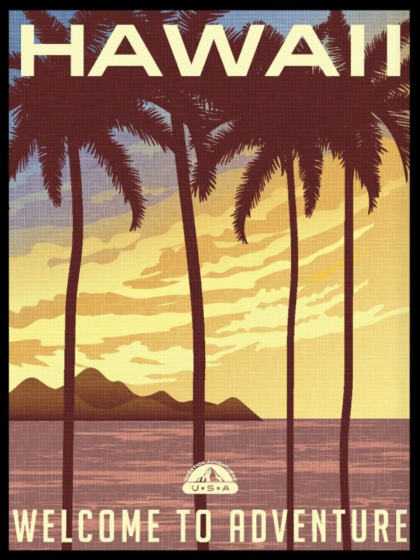 Hawaii State Illustration Juliste