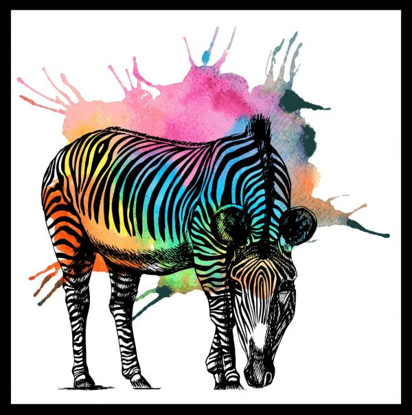 Zebra Colorful Abstract Juliste