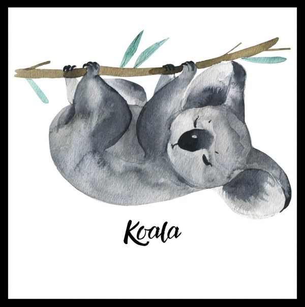 Sleeping Koala Watercolor Juliste
