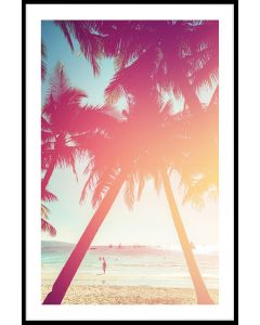 Beach Palm Tree N02 Juliste